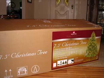 treebox.jpg
